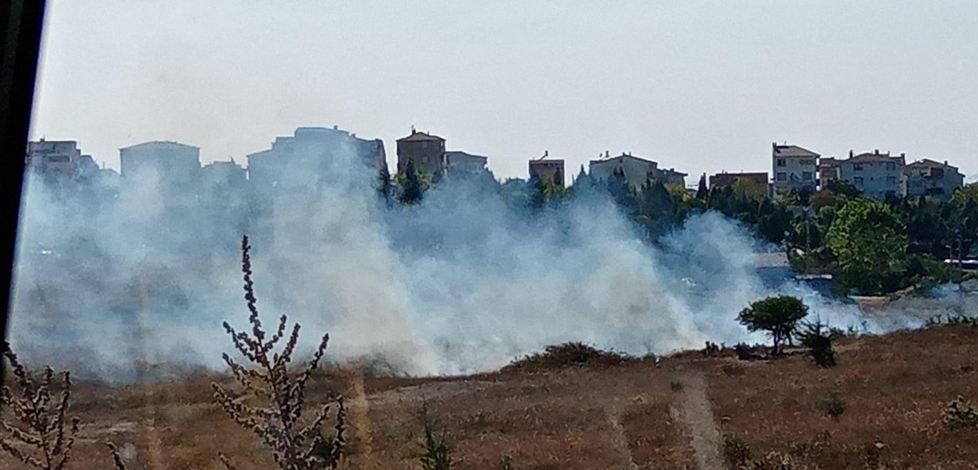 Çayırova'da otlak yangını