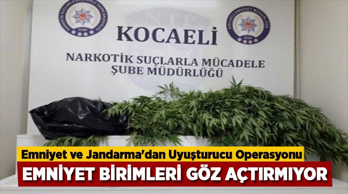 Kocaeli'de Uyuşturucu mücadelesinde 59 olayda toplam 120 şahsa Adli İşlem Yapıldı