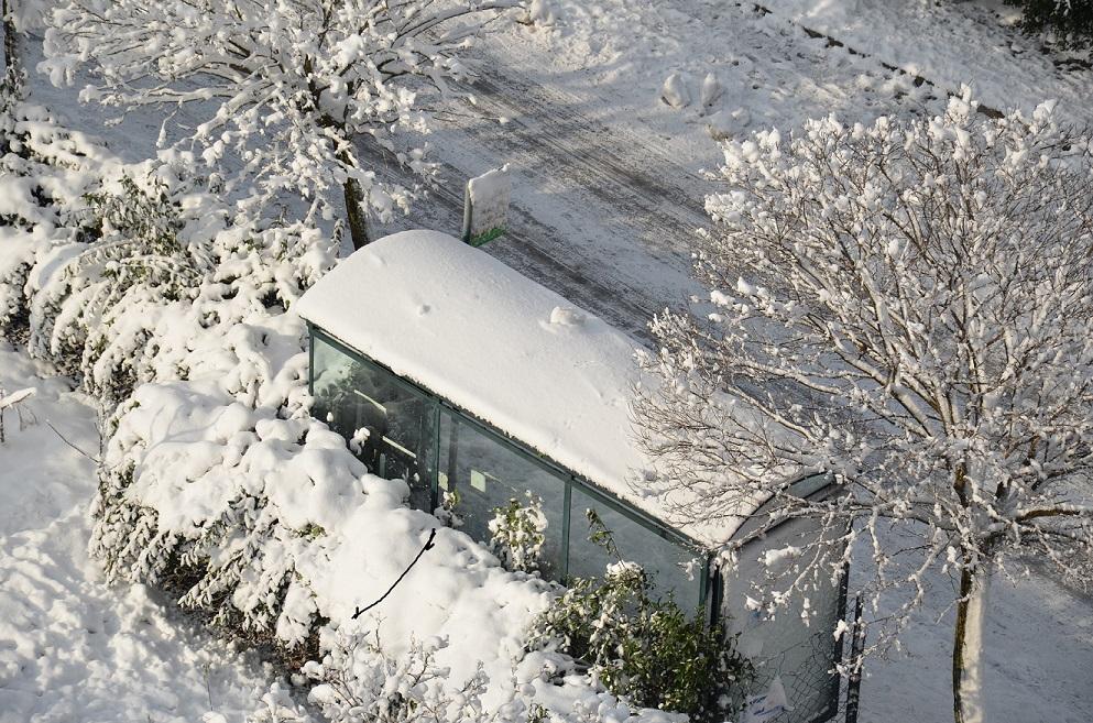 Kar gitti, ayazı kaldı, hayvanlar ve kuşlar saçak altlarına sığındı…
