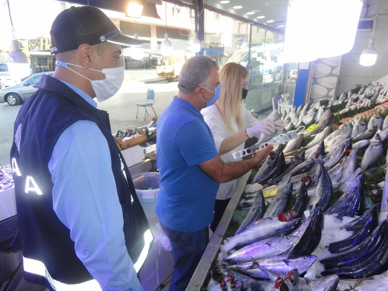Gebze'de bayat ve küçük balık satmaya izin yok!