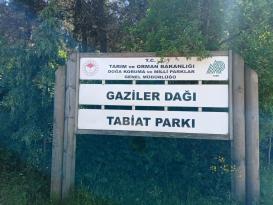 Gaziler Tabiat Parkı'na ciddi şekilde sahip çıkmak lazım!
